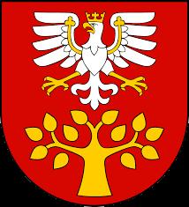 ICO powiat